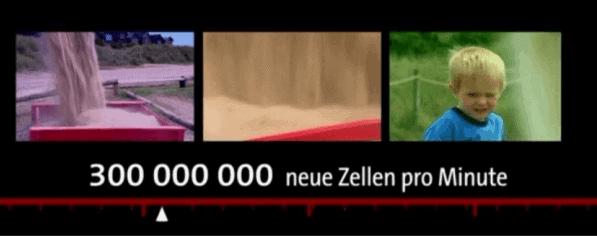 300tsd zellen