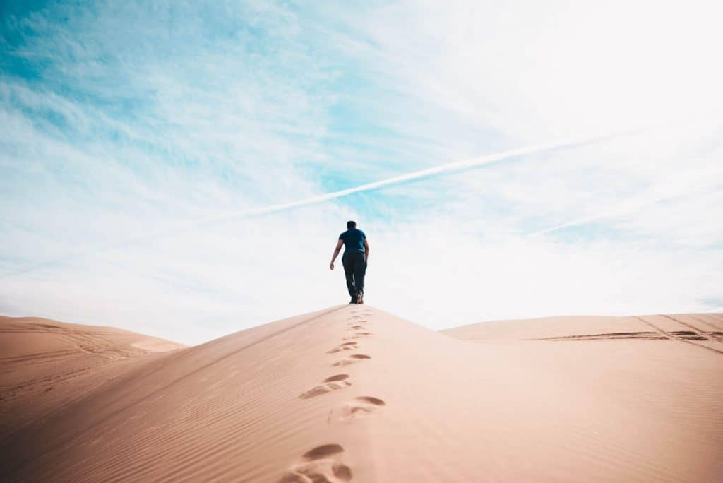 Große Pläne und kleine Schritte-2